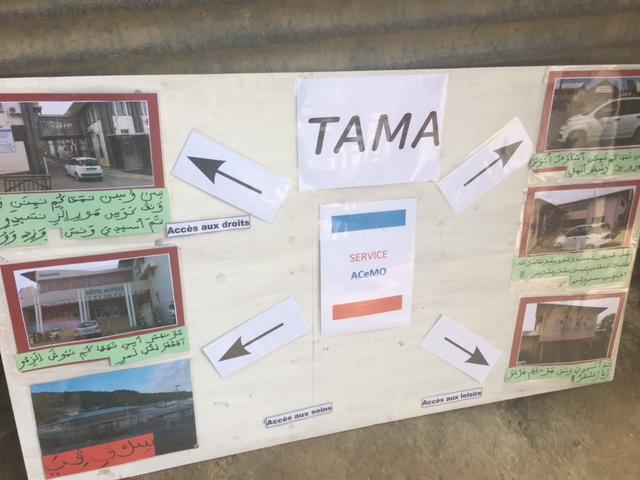 Tama en mission sur les hauteurs de La Vigie