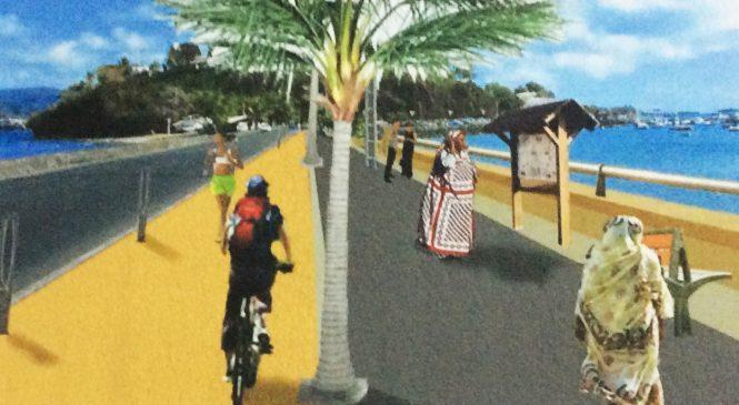 Qu'est devenu le projet de «la promenade des Mahorais»?